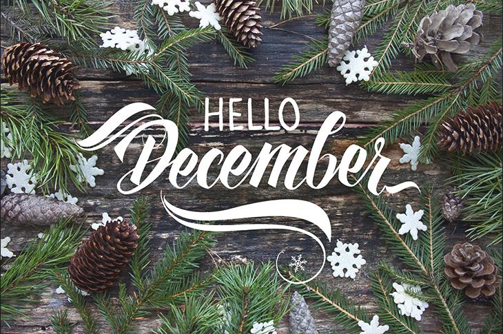 Content Marketing : December