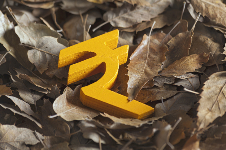 Content Marketing - Start of financial year Concept - Scatter. Rupee Symbol lying on a set of leaves