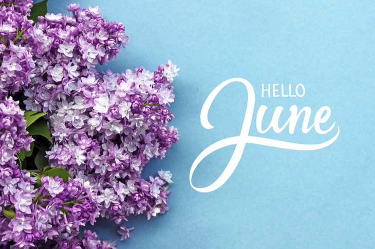 June 2019 - Hello June hand lettering card with summer lilac flowers on blue background - Scatter