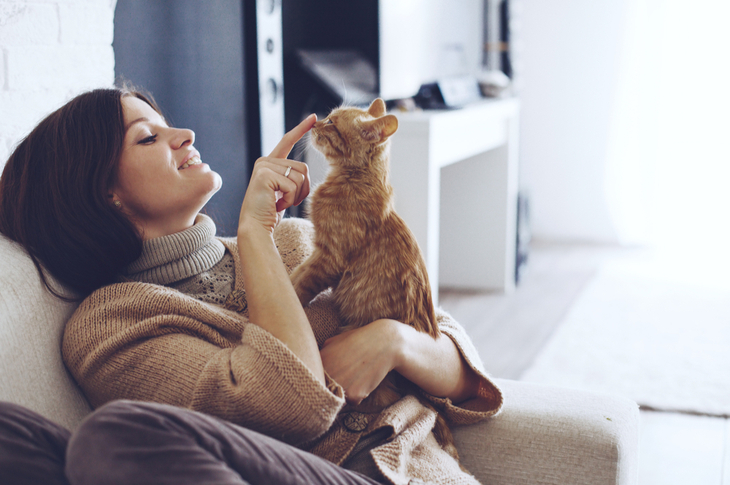 World Cat Day Content Marketing Ideas