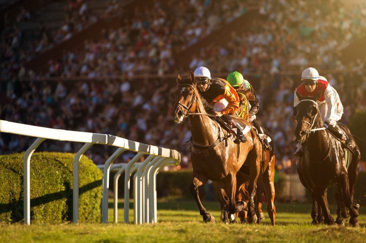 Horse Racing Content Marketing Ideas