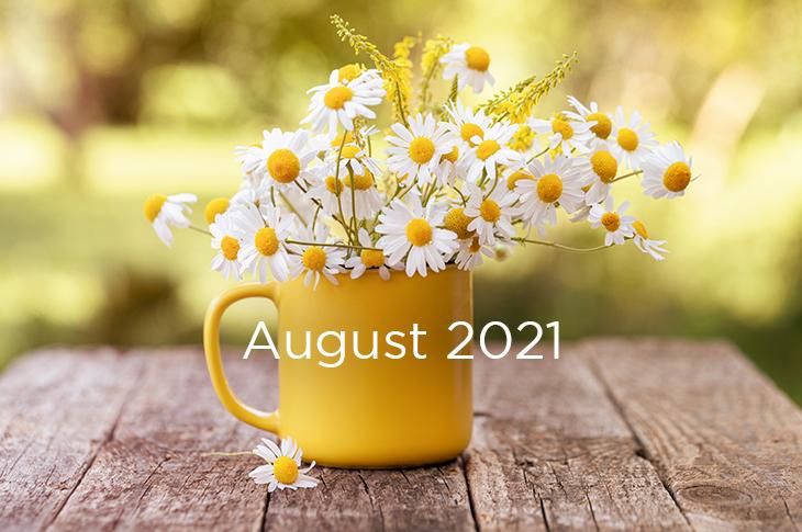 August 2021 Content Marketing ideas