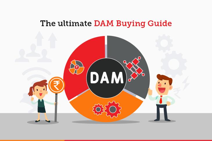 DAM buying guide